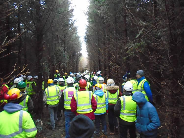 veon-irish-forestry-harvesting-field-day-nov-2016-9